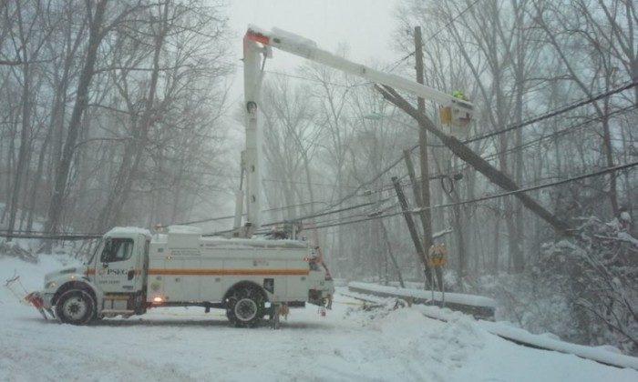 hopewell tree down