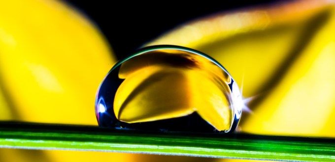 drop-of-water-361104_1280
