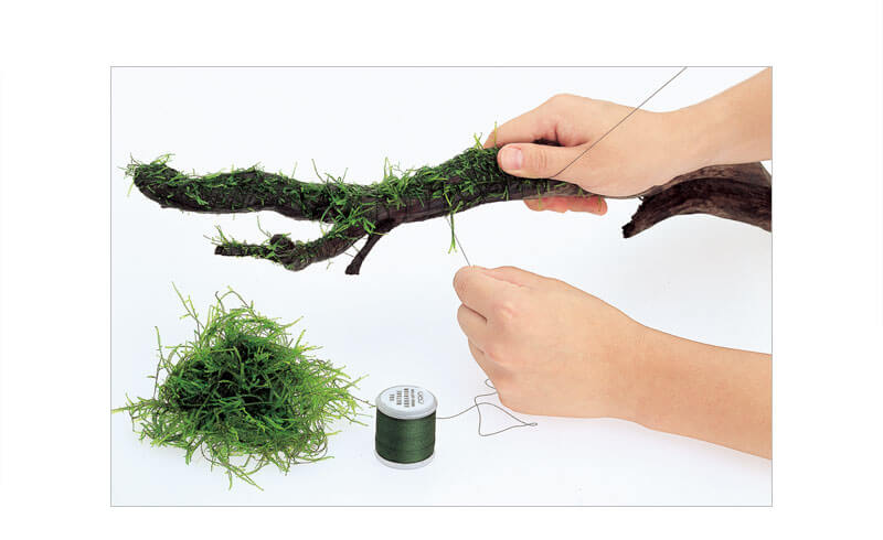 mosscottontying