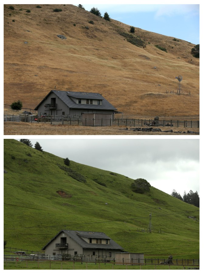 JULY 15, 2014:  (TOP PHOTO) A home stands next to a hill that is brown with dead grass  in Nicasio, California.  (Photo by Justin Sullivan/Getty Images)  APRIL 10, 2017: (BOTTOM PHOTO) A home stands next to a hill with green grass on in Nicasio, California.  (Photo by Justin Sullivan/Getty Images)