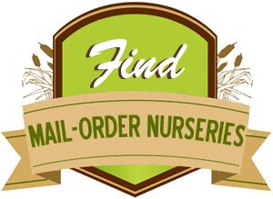 FindMailOrder
