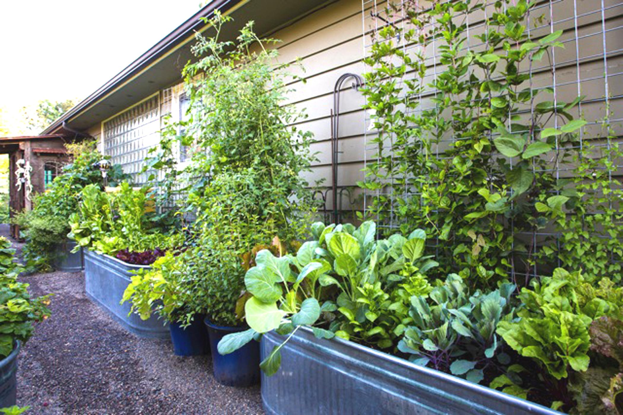 Gardens beautiful enough to eat