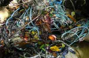 plastic rope featured