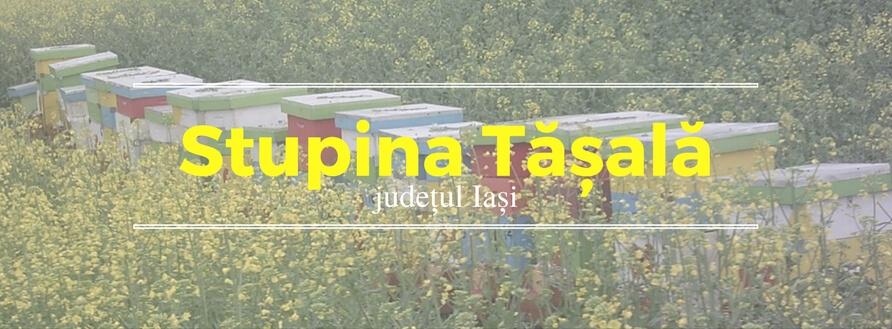 Stupina Tasala, aurul galben al Iasului