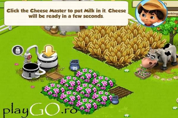 Joaca Family Barn online