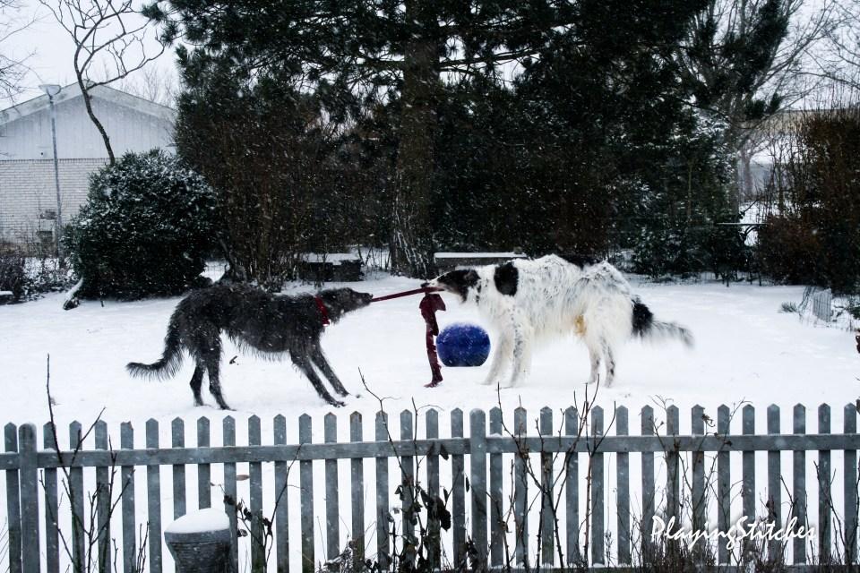 [:ru]Игра в крестики гончие в снегу