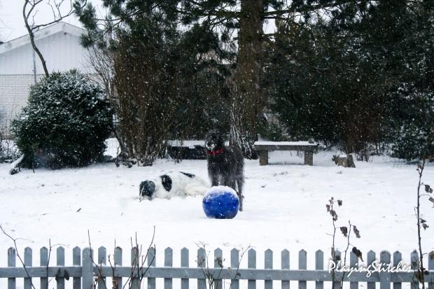 [:en]snow in my garden March hounds russian borzoi [:ru] гончие борзая снег в конце марта в моем саду