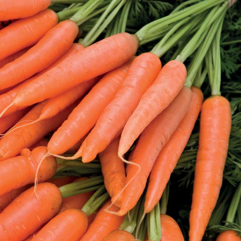 Au Natural Factual: Lycopene- Veggies, Fruits & Skincare