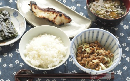 Fermented soybeans Natto, boiled rice, grilled fish and miso soup