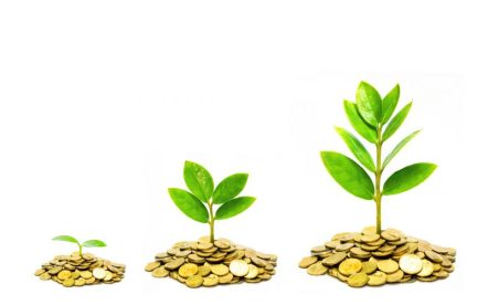 trees growing on coins from small size to big / business growth with csr practice ans environmental concern