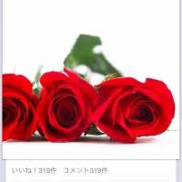 IMG_3736-0.JPG