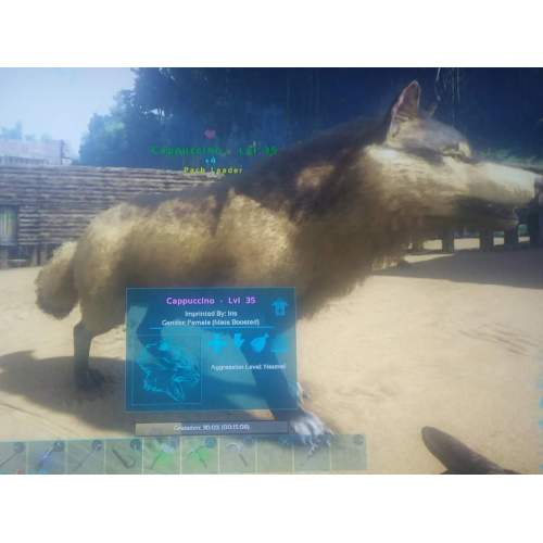 Medium Crop Of Wolf Names Female