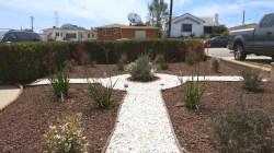 Small Of Redo Backyard Grass