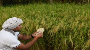 Government may hike agri-credit target to Rs 10 lakh crore