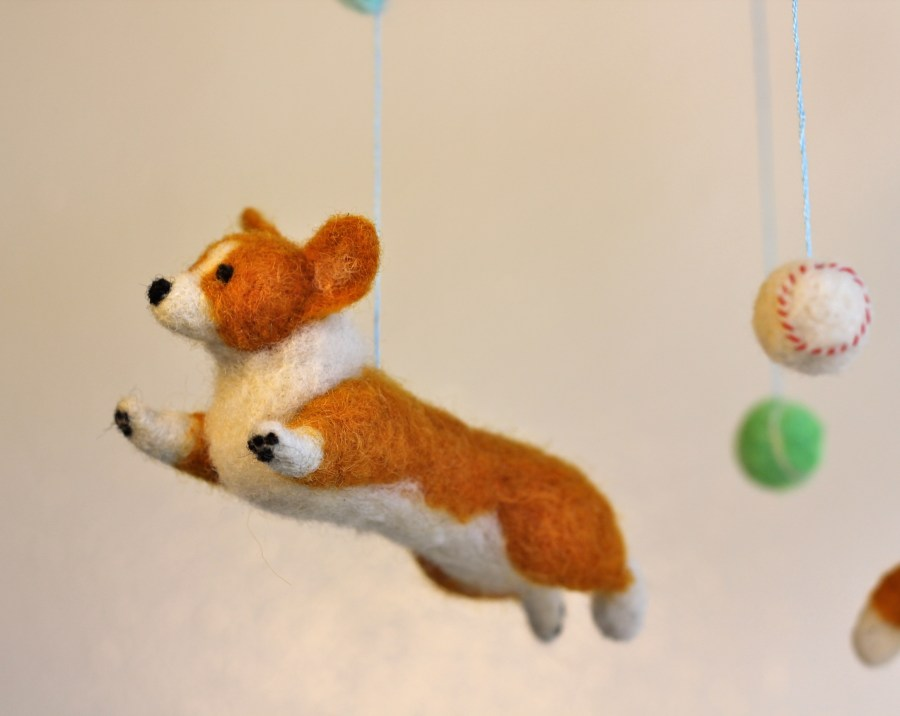 flyingcorgi