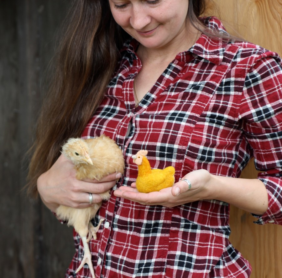chickens, my first and still favorite animal on the farm