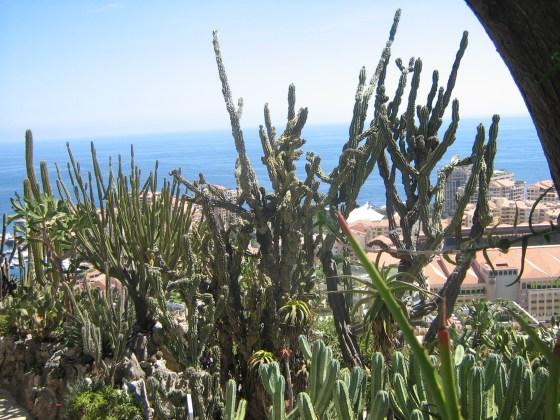 Lazurowe Wybrzeże i Costa Brawa 083