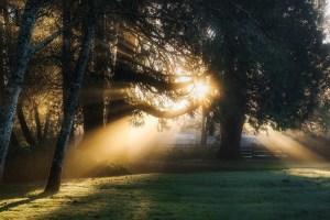 sunrise-1886619_1280