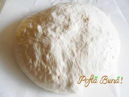 paine-neframantata-pofta-buna-gina-bradea (10)