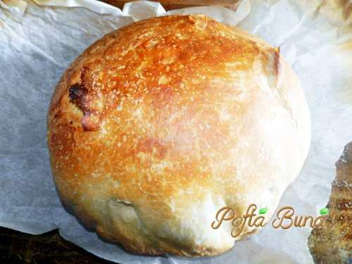paine-neframantata-pofta-buna-gina-bradea (2)