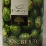 Gooseberry Vintner's Harvest fruit base