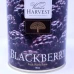 Blackberry Vintner's Harvest Fruit Base