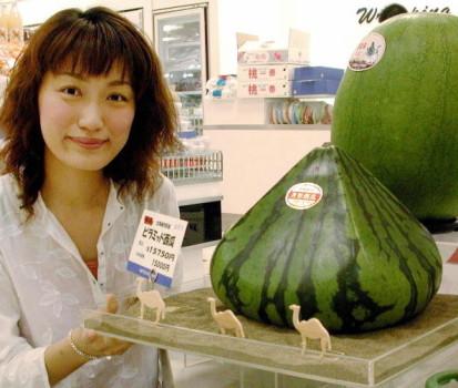 Pyramid Watermelons