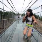 glass-bottom-bridge-china