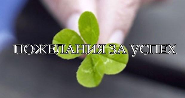 pozhelaniya-za-uspeh-cover