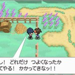 Pokémon Black 2 / White 2 Screenshots