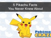 5-pikachu-facts-you-never-knew-about