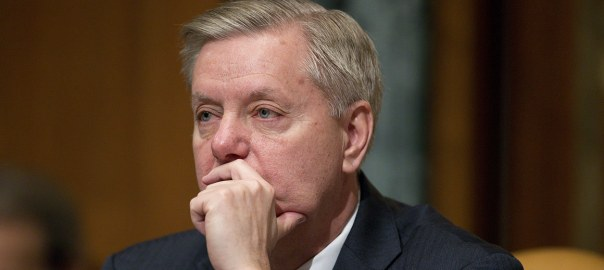 lindsey graham donald trump