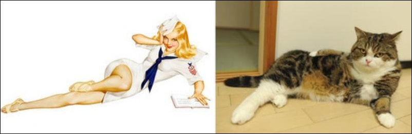 cats-pinup-girls-018