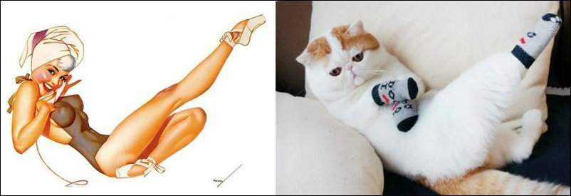 cats-pinup-girls-036