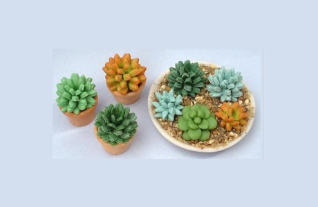 Tutorial: Tiny Clay Succulent Plants