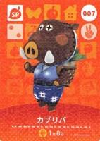Amiibo card7