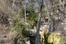 More small stream