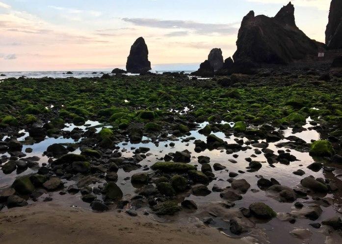 Cannon Beach Haystack Rock