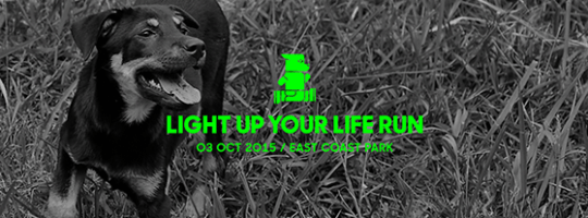 Image Credit: Light Up Your Life Run 2015