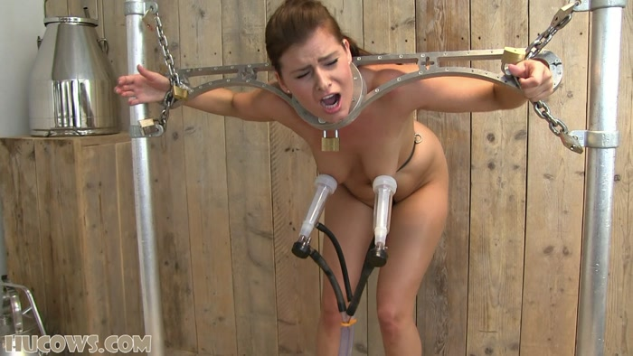 Bdsm the training of alisha angel have passed