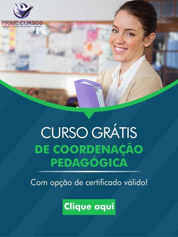 16 - Coordenacao Pedagogica
