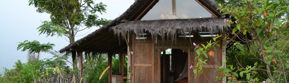 The front of the Imah Guru, or teacher's residence, the first javanese home we rebuilt and edited for guest comfort. It features a beautiful simply carved entryway, glass panels in the trusswork for natural light, a view of Gunung Gede visible from the pillows of your bed, and an outdoor bath wrapped around a tea tree. Also Solar powered, like all of our outbuildings.