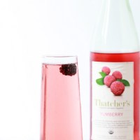 Yumberry Mimosa |Posh Little Designs