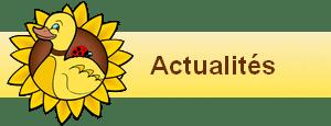 bannière widgets actualité poulailler bio