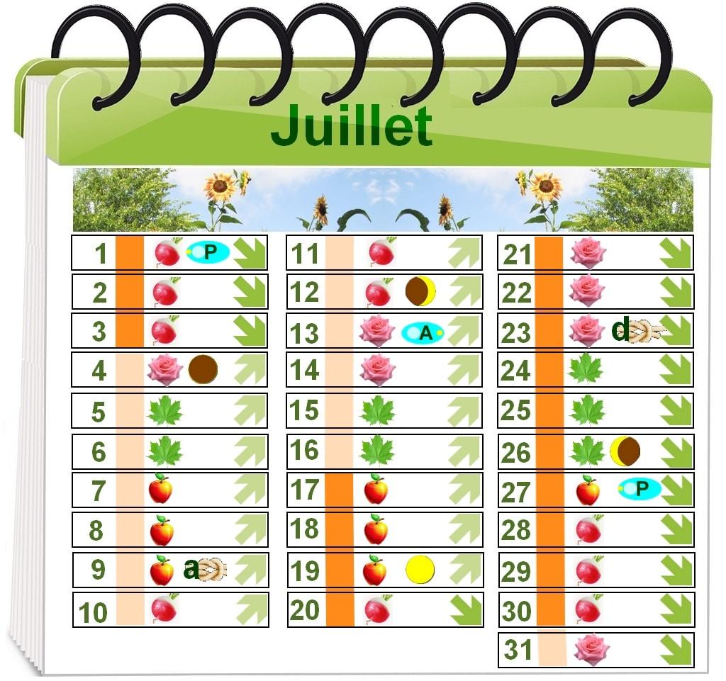 Calendrier lunaire 2015 jardinage calendrier lunaire mars for Calendrier lunaire jardin 2015 gratuit