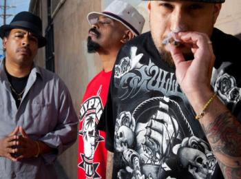 cypress-hill-weed-by-jenne-warren