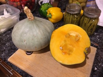 Homegrown Sweet Meat Squash