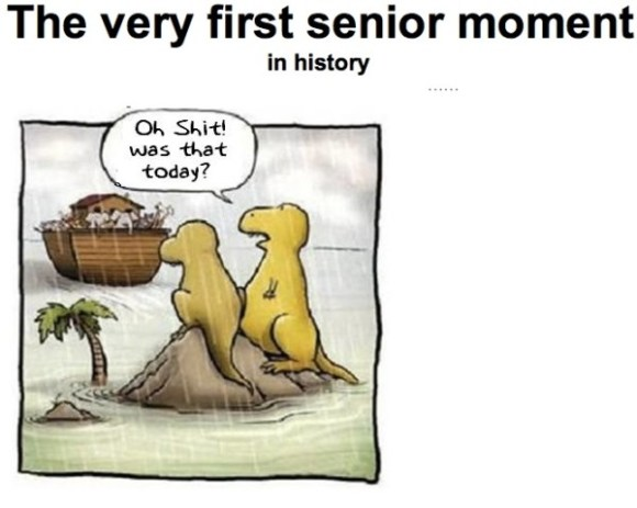 Senior moment copy
