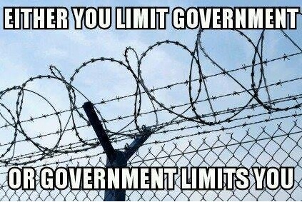 Limit Government copy