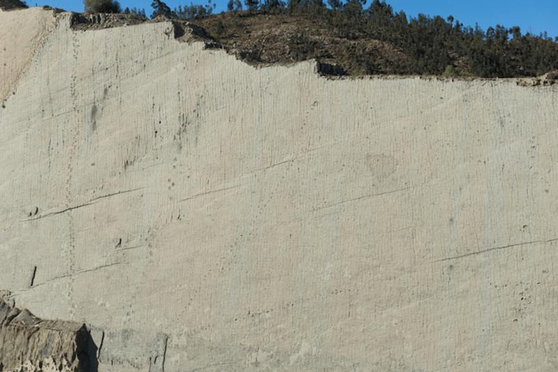 Скала динозавров в Боливии.